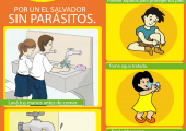 afiche_desparacitacion_OPS