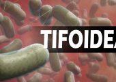 evento12022018_tifoidea