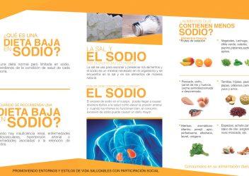 2- Tríptico Dieta baja en sodio